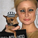 Celebrity Mugshots You Never Knew You Couldn't Miss | Paris Hilton, Fergie, Lindsay Lohan and more
