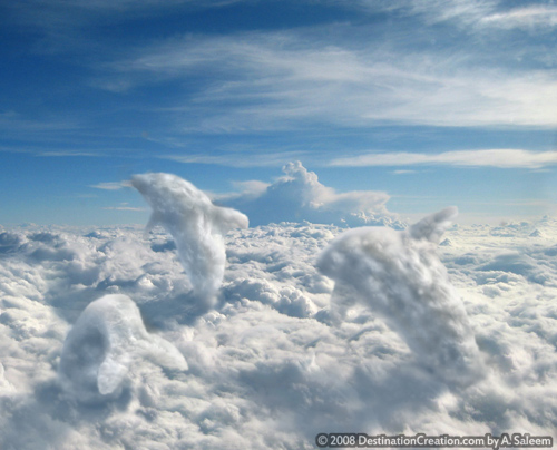 airquatics.jpg