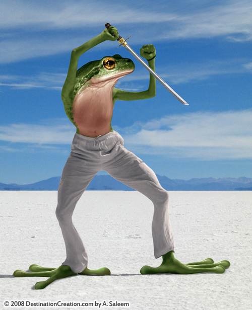 ninjafrog08.jpg