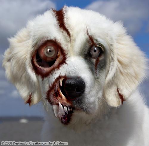 zombiesbestfriend.jpg